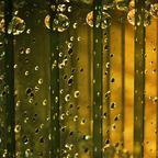 Glas impression