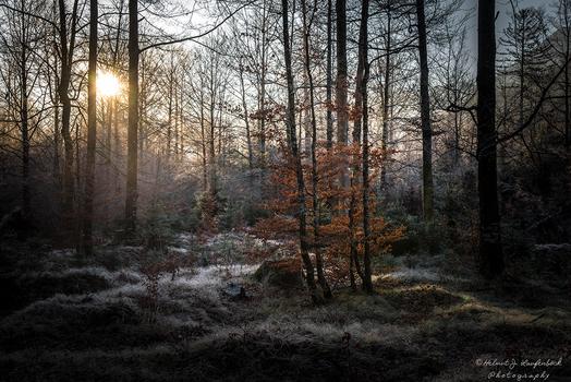 Kalter Morgen!