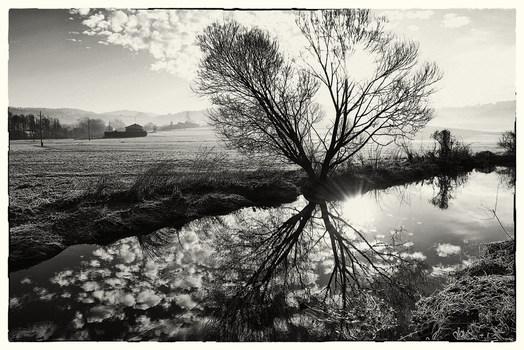 Morgends am Staudamm