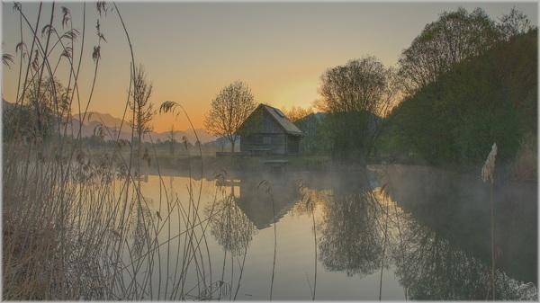 Früh morgens am Teich