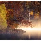 Herbstliches Morgenlicht