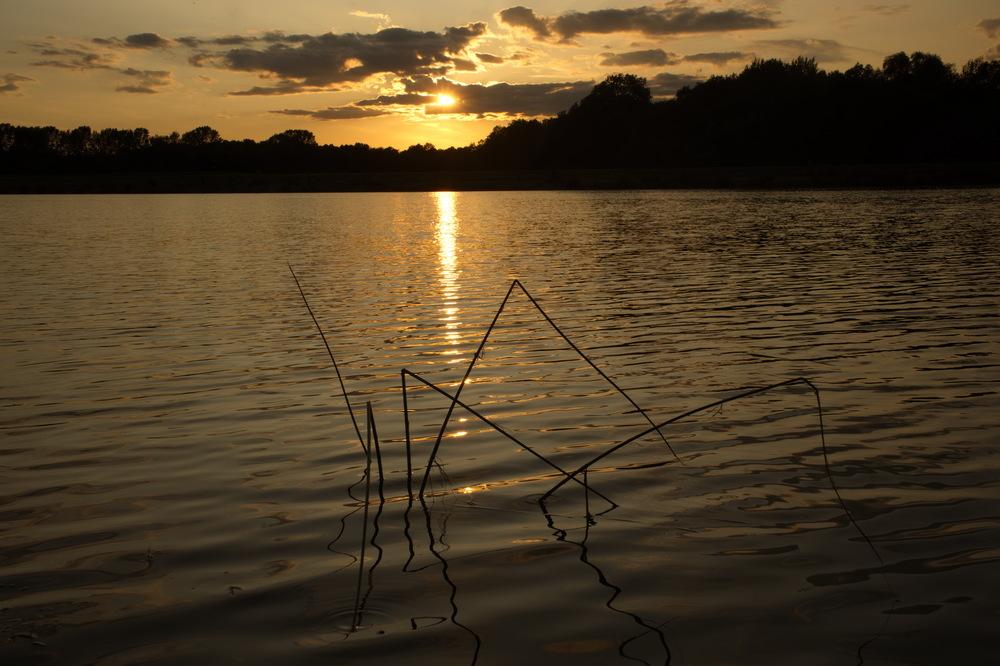 Am Abend beim Teich
