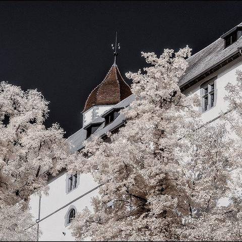 Detail Schloss Haigerloch