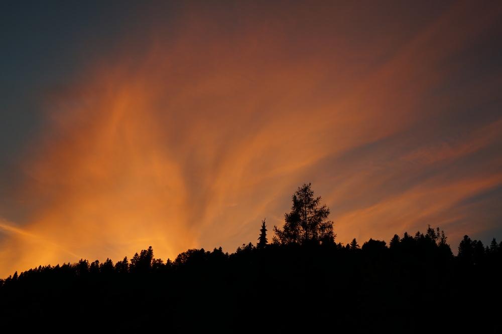 Bregenzerwald am frühen Abend 2