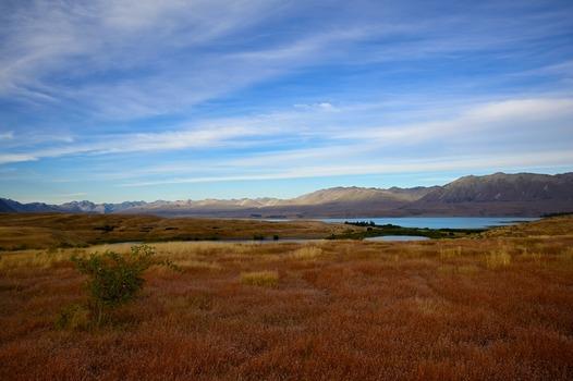 Lake Tekapo, NZ