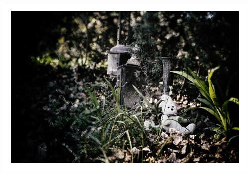 FriedhofDerNamenlosen(7)