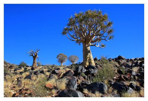 Namibia 2