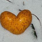 Kalte Herz