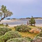 Elafonisi / Kreta (2)