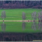 Am Putterersee -2-