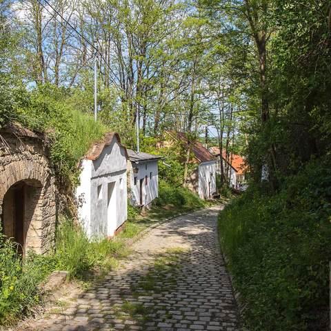 Kellergasse Oberkreuzstetten, NÖ