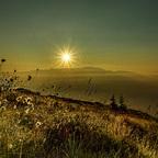 Sonnenaufgang auf der Alm mit Wollgras