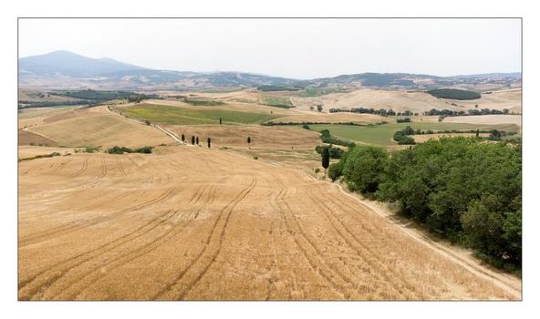 Campo Elisi