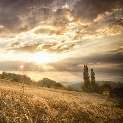 Sonnenaufgang im Südburgenland