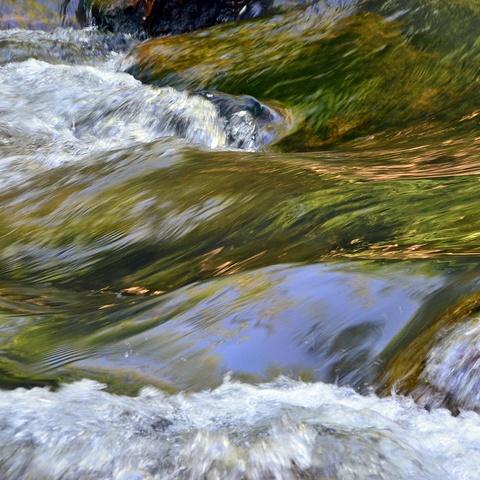 Wasser, immer wieder Wasser
