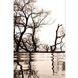Naturspiegel.....