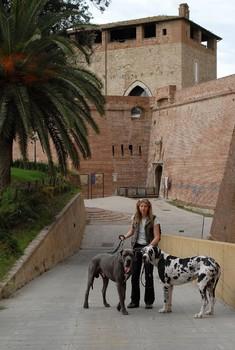 Stadtmauer von Grosseto