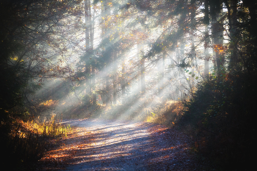 Herbstmorgen in Rudersdorf