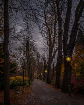 Abends im Stadtpark