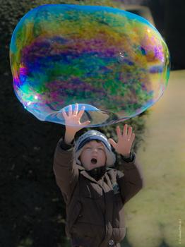 Die Blase