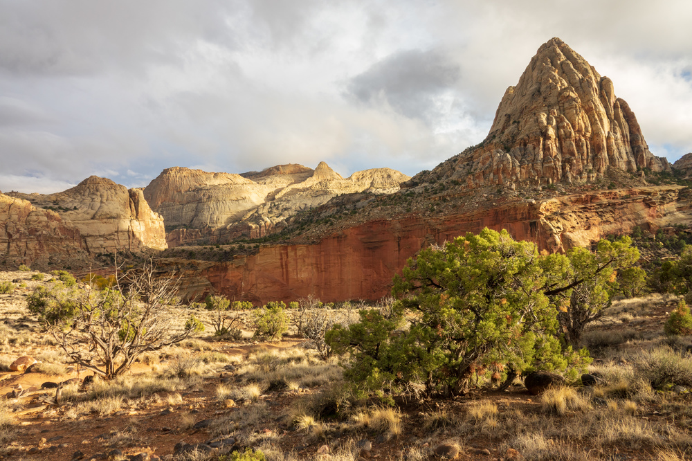 Capitol Reef Nationalpark IV