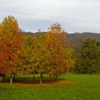 Herbst im Schlosspark