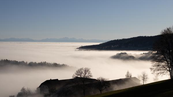 Nebel im Mühlviertel