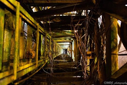 Crane Inside
