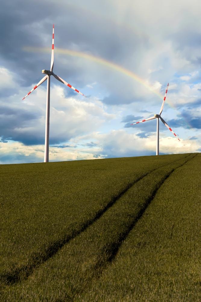 Windräder im Frühling