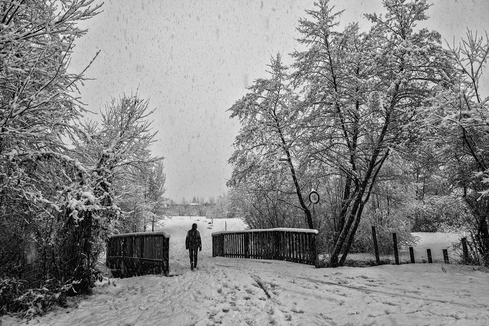 Im Schneefall