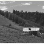 Schutzhütte Alm - Erich