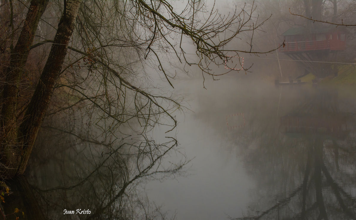 Versteckt im Nebel