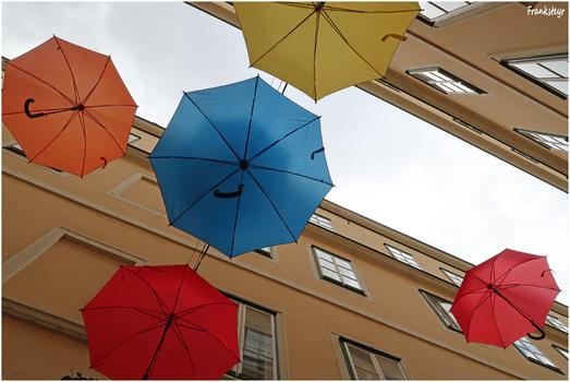 Wiener Schirme