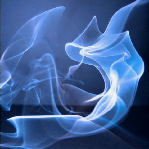 Rauch-Embrio
