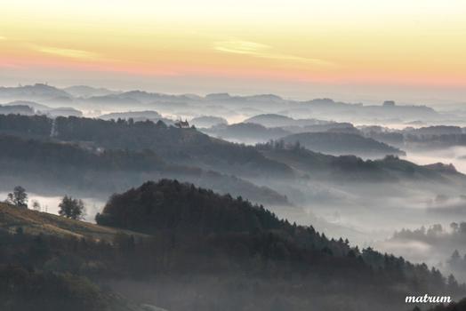 Weinland Südsteiermark im Nebel