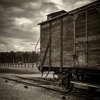 Auschwitz -3-