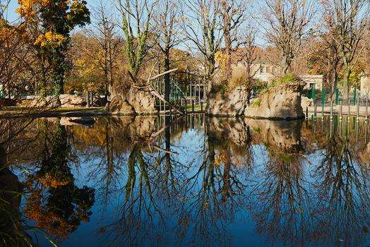 Spiegelung im Nilpferd Teich