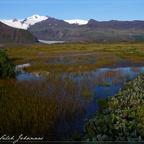 Island Svinafellsjükull