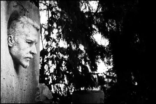 AmZentralfriedhof #7