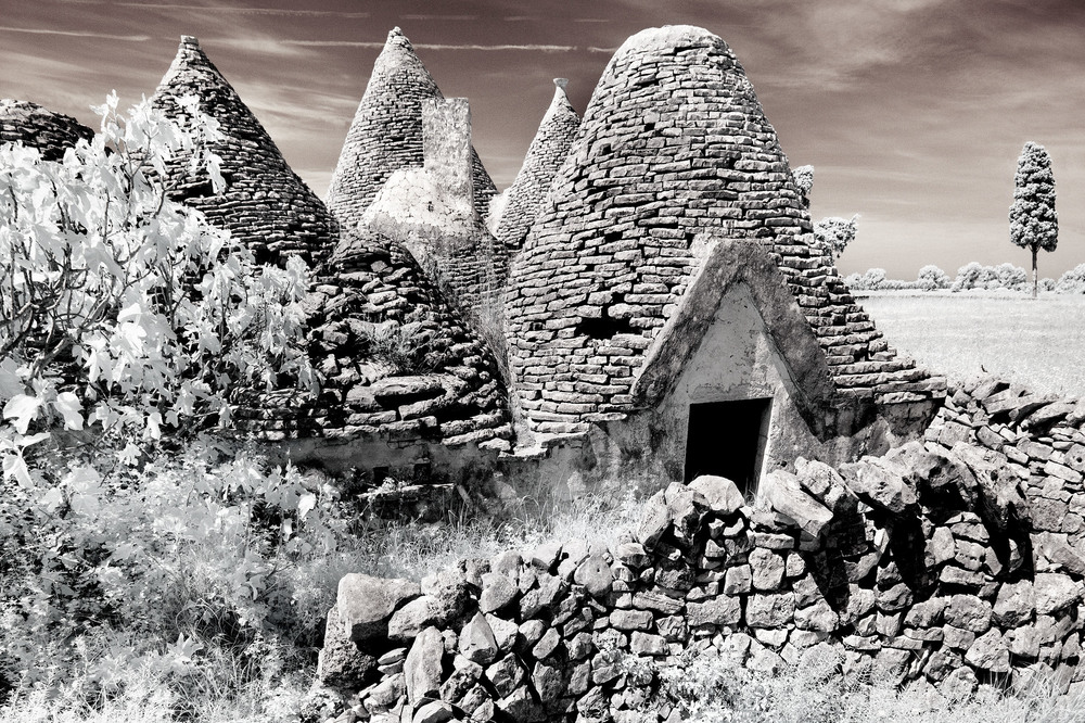 Alte Masseria im Olivenhain , Albarobello