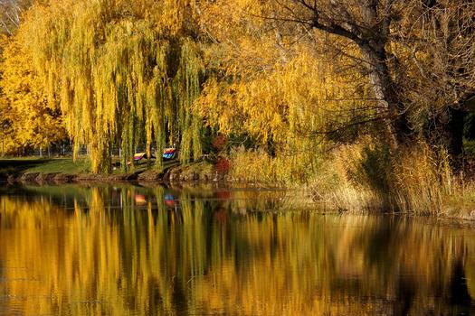 Herbst in Wien 17.03