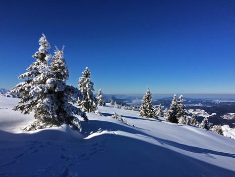 Hochlecken im Winter