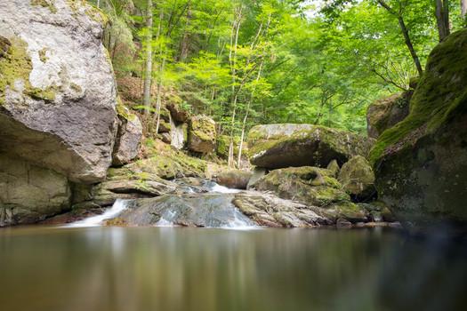 Grüner Tümpel im Pesenbachtal