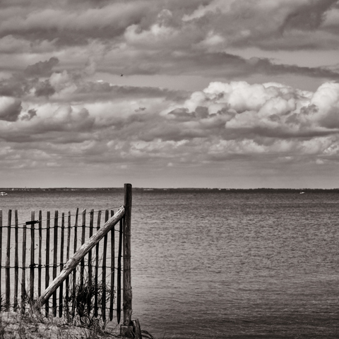 The Fence And The Sea