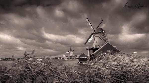Windmühlen in Zaanse Schans / Holland 2019