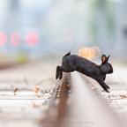 *hopp, hopp – schnell über die gleise!*