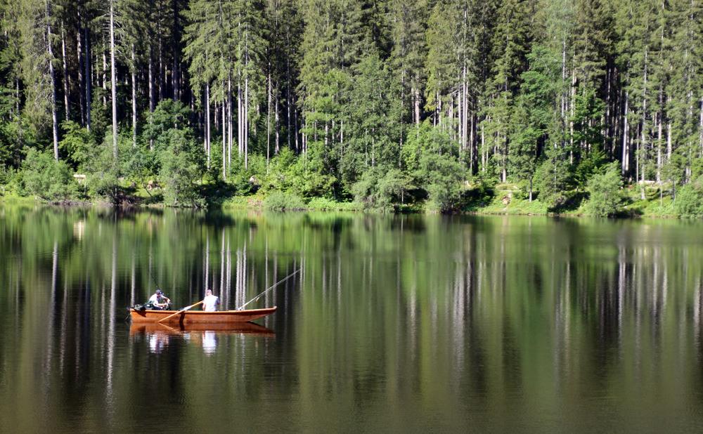 Die Angler...