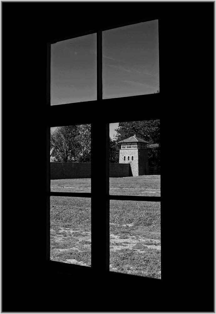 Mauthausen Memorial (14)
